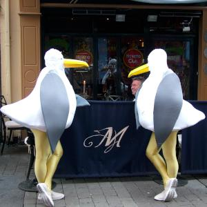 Giant Seagulls strolling street theatre act