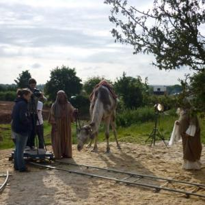 Camels for film, television and photography